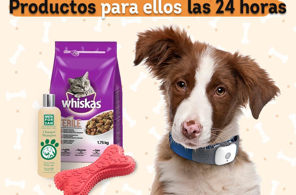 Vending para mascotas: La solución 24 horas para los animales domésticos